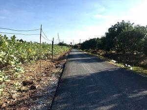 For SaleLandMahachai Samut Sakhon : Land for sale 14-1-41 rai, width 80 x 342 meters, with 2 adjacent plots, Soi Chalerm Prakiat, Phutthasakhon Road