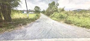 ขายที่ดินนครนายก : ขายที่ดิน 100 วา. แปลงมุม ถมแล้ว ติดถนน 2 ด้าน กว้าง 19x21 เมตร ห่างจากถนนทางหลวงชนบท 500 เมตร