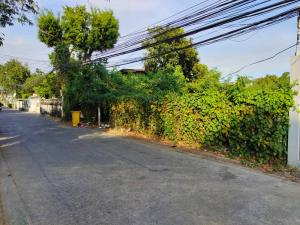For RentLandLadprao, Central Ladprao : Land for rent, area 153 square wah, can be planted for construction, Ladprao 87 Road, intersection 10, rental price 15,000 baht / month