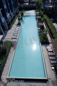 For RentCondoRamkhamhaeng, Hua Mak : For Rent (The Base Rama9-Ramkhamhaeng) 7,500 / month Condo for rent at The Base 7,500 per month only.