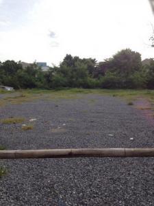 เช่าที่ดินลาดพร้าว101 แฮปปี้แลนด์ : RD005 ให้เช่าที่ดินถมแล้ว 326 ตารางวา ลาดพร้าว 130 แยก 6 ตรงข้ามคอนโด Tender park