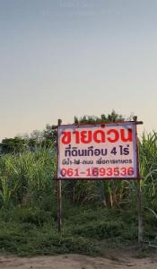 For SaleLandSuphan Buri : Land for sale on two sides of the road. For agriculture after retirement Near Wat Thep Phithak, Thung Khok