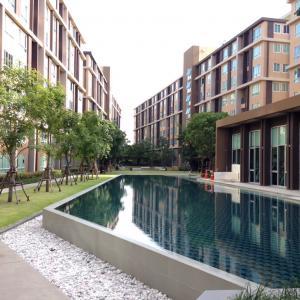For SaleCondoRangsit, Patumtani : Sale Dcondo Rangsit Phase 1: Building D, 8th floor