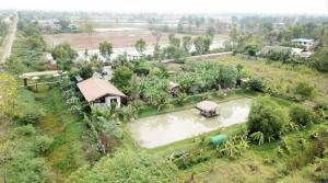 ขายบ้านอยุธยา สุพรรณบุรี : ขายบ้าน คาเฟ่ และฟาร์มสเตย์