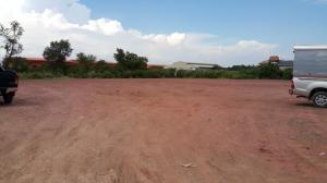 ขายที่ดินพระราม 2 บางขุนเทียน : ขายที่ดิน 2 ไร่ แสมดำ ซอย 14 ถมแล้ว ที่สวย หน้ากว้าง 80 เมตร เหมาะทำโรงงานหรือโกดัง