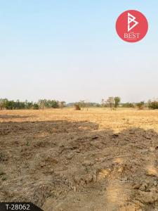 For SaleLandPrachin Buri : Land for sale, area 47 rai, suitable for agriculture, Sri Maha Phot, Prachinburi