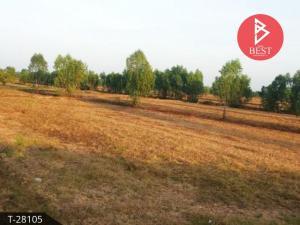 For SaleLandBuri Ram : Land for sale in the area of 84 rai 1 ngan, Nang Rong District, Buriram Province.