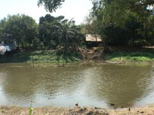 For RentLandRangsit, Patumtani : land for rent Next to the natural canal, Lam Luk Ka Road, near the ring road