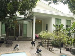 For SaleHouseRatchathewi,Phayathai : House for sale with land, Phayathai Road, Soi Pradiphat, area 214 sqw.