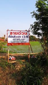 ขายที่ดินสุพรรณบุรี : ขายด่วนมาก ที่ดิน 13 ไร่เศษ เหมาะทำสวนเกษตร บนเส้นทางขึ้นภาคเหนือสุพรรณ-ชัยนาท