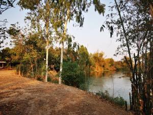 เช่าที่ดินขอนแก่น : ให้เช่าที่ดิน 5 ไร่ ติดริมน้ำ วิวโค้งน้ำ ทำเลเยี่ยม บ้านห้วยพระ ขอนแก่น ห่าง ถ.เพียง 300 เมตร