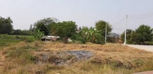 ขายที่ดินกาญจนบุรี : ที่ดินแบ่งขาย