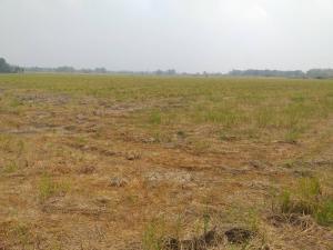For SaleLandNakhon Nayok : Beautiful Nakhon Nayok land, good price, 90 rai