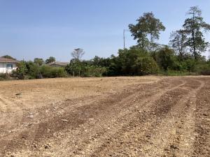 For SaleLandRangsit, Patumtani : Land for sale on Sawai Pracharat Road Lamlukka Khlong Si