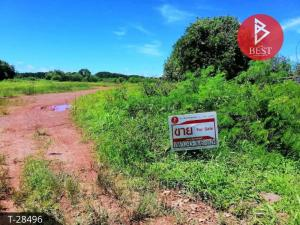 For SaleLandChanthaburi : Land for sale in the area of 11 rai 2 ngan 26 square wana Yai Am Chanthaburi