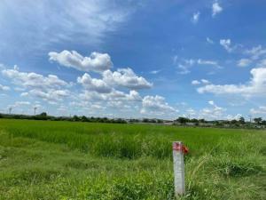 ขายที่ดินอยุธยา สุพรรณบุรี : LS185ขายที่ดิน 13 ไร่เศษ พื้นที่สีม่วง อ.อุทัย จ.อยุธยา ใกล้นิคมโรจนะอยุธยา