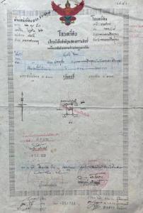 ขายที่ดินอยุธยา สุพรรณบุรี : อยู่ในชุมชน ใกล้วัดพนัญเชิง