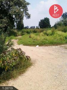 For SaleLandKorat KhaoYai Pak Chong : Land for sale in an area of 96.6 square wa, Sung Noen District, Nakhon Ratchasima Province.