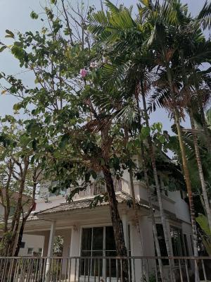 For SaleHouseRama 2, Bang Khun Thian : House for sale, second hand. Pruklada 2 Village, Bang Khun Thian, Tha Kham - Rama 2, good weather, level, shady garden house, the cheapest, reduced at all.