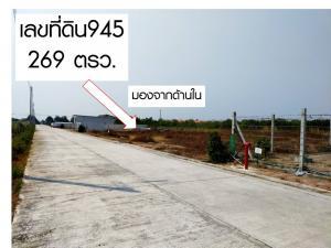 ขายที่ดินฉะเชิงเทรา : ขายที่ดิน100/119/134/135/150/ 169/269 ตรว.ถมแล้ว พร้อม ถนนคอนกรีต ท่อระบายน้ำ เมนไฟฟ้า-ประปา สด หรือ ผ่อน