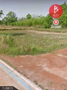 For SaleLandBueng Kan : Urgent sale, vacant land, area 7 rai, Phon Charoen, Bueng Kan.