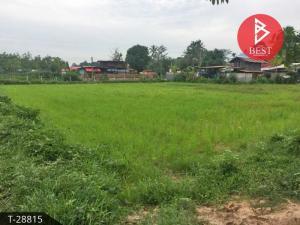 For SaleLandUdon Thani : Urgent sale of vacant land 30 rai 75.0 square wa Sri That, Udon Thani.