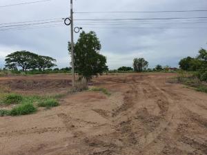 ขายที่ดินอยุธยา สุพรรณบุรี : ขายที่ดินถมแล้ว ใกล้ทางหลวงสายเอเชีย บางปะอิน-บางปะหัน สาย 347 จังหวัดอยุธยา