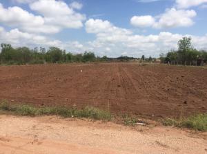 ขายที่ดินเลย : ขายด่วนที่ดินเปล่าตรงข้ามสมาคมชาวไร่อ้อย KSL14ไร่ 2 งาน 71 ตร.วา