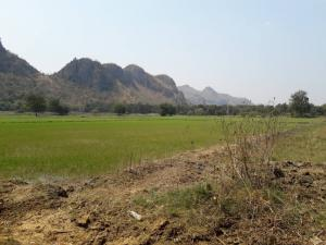 For SaleLandKanchanaburi : Land for sale in Kanchanaburi province, area 146 rai 3 ngan 34 Tarawa mountain view.