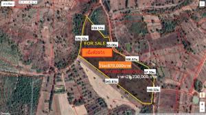 For SaleLandSakon Nakhon : Land for sale in the area of 29 rai 3 ngan 73 square wa, Tambon Nong Bua Sim. Kham Ta Kla District Sakon Nakhon Province