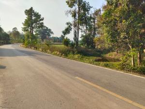 ขายที่ดินปราจีนบุรี : ขายที่ดิน ย่านรี กบินทร์บุรี ปราจีนบุรี ตินถนนดำ ทางสาธารณะ เหมาะทำที่อยู่อาศัย 300,000/ไร่