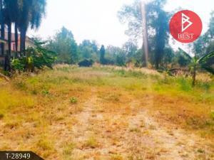 ขายที่ดินปราจีนบุรี : ขายที่ดินแปลงขนาดเล็ก เนื้อที่ 2 งาน 47 ตารางวา อำเภอนาดี จังหวัดปราจีนบุรี