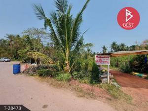 For SaleLandSamut Songkhram : Land for sale on the road and canal 1 rai 69.0 square wa, Amphawa, Samut Songkhram.