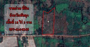 ขายที่ดินพัทลุง : S1098ขายที่ดินที่ ต. ลานข่อย อ.ป่าพะยอม จ.พัทลุง คุณเอ็ม 097-414-6165