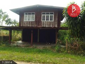 For SaleLandAmnat Charoen : House and land for sale, area 1 rai, Amnat Charoen Province