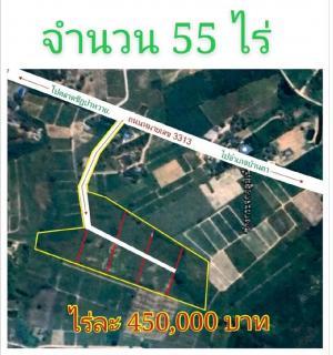 ขายที่ดินราชบุรี : ขายที่ดินจังหวัดราชบุรี อำเภอบ้านคา จำนวน 55 ไร่