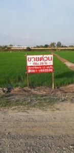 ขายที่ดินอยุธยา สุพรรณบุรี : ขายด่วน ที่ดินโฉนด 21ไร่ รูปที่ดินสวยมาก สุพรรณบุรี