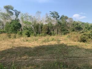 ขายที่ดินภูเก็ต ป่าตอง : #ที่ดินราคาดีที่น่าลงทุน ที่หน้ากว้างติดถนนกว่า 50 เมตร ติดกับโครงการพนาสนธิ์ หลังรพ. ถลาง เนื้อที่ 4 ไร่ 2 งาน 4 ตารางวา