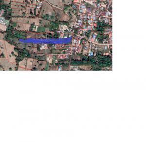 ขายที่ดินอุบลราชธานี : ขายที่ดิน 6ไร่ 1 งาน ใกล้ชุมชม หมู่บ้านเยอะ