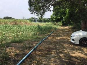 ขายที่ดินนครปฐม พุทธมณฑล ศาลายา : ขายที่ดิน 5-2-68ไร่ ตำบลทัพหลวง อำเภอเมือง จังหวัดนครปฐม