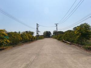 For SaleLandRangsit, Patumtani : Land for sale, purple land reclamation. Lam Luk Ka Khlong 9 land, 8 rai 1 ngan, 39 sq m, is a place that can do business, 3-phase electricity with a good atmosphere.