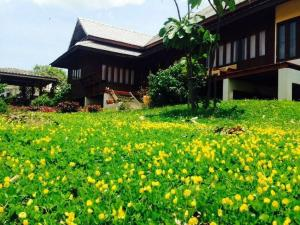 For SaleLandChiang Mai : ขายด่วน! บ้านไม้สักทองพร้อมที่ดิน แม่แตง เชียงใหม่ ใกล้ค่ายมวยบัวขาว