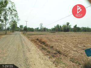 For SaleLandSurin : Land for sale, 3 rai, 3 ngan, 56 square meters, Sikhoraphum, Surin