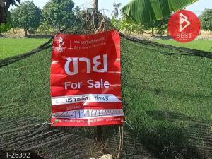 For SaleLandNakhon Pathom, Phutthamonthon, Salaya : Land for sale 2 rai, 3 ngan, 18 square meters, Sam Phran, Nakhon Pathom.