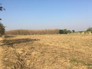 เช่าที่ดินเพชรบูรณ์ : #ประกาศให้เช่าที่ดินเปล่า 27 ไร่ ติดคลองห้วยอังคาร เขตอำเภอเมืองเพชรบูรณ์ สามารถทำสัญญาระยะยาวได้ สนใจโทร 099-363-5547 #ขอบคุณค่ะ  #TaraAssetSince1950