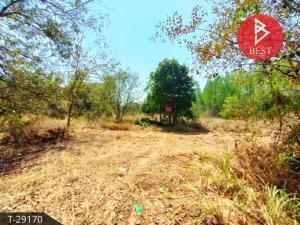 For SaleLandMaha Sarakham : Land for sale in the area of 2 rai 1 ngan 30 square wa Kantharawichai Maha Sarakham