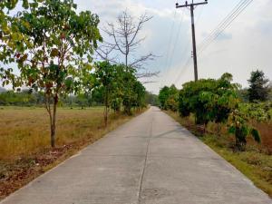ขายที่ดินสระบุรี : ขาย  !!!  ที่ดิน 19  ไร่ ตำบล ชะอม   ใกล้วัดป่าสว่างบุญ  ไม่ห่างกรุงเทพฯ   เพียง  1 ชม.