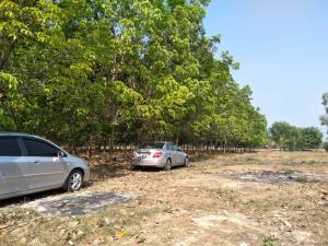 For SaleLandNakhon Nayok : Land for sale in Nakhon Nayok rubber plantation, 30 rai, beautiful, very cheap for sale, 760,000- per rai.
