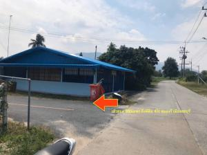 For SaleLandPattaya, Bangsaen, Chonburi : Land for sale in Nongree, Mueang Chon Buri, area of 4 rai, 1.6 million each.