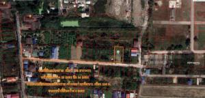 ขายที่ดินนครปฐม พุทธมณฑล ศาลายา : ขายที่ดิน 200 ตรว. ถมแล้ว ถนนคอนกรีตเสริมเหล็กกว้าง 5 เมตรใกล้มหาวิทยาลัยกรุงเทพธนบุรี คลองทวีวัฒนา คลองเนินทราย สาธารณูปโภคพร้อม